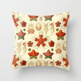 Ernst Haeckel - Scientific Illustration - Asteroidea Throw Pillow