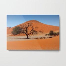 NAMIBIA ... Namib Desert Tree II Metal Print