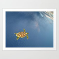 hawksbill swimming in the sky Art Print