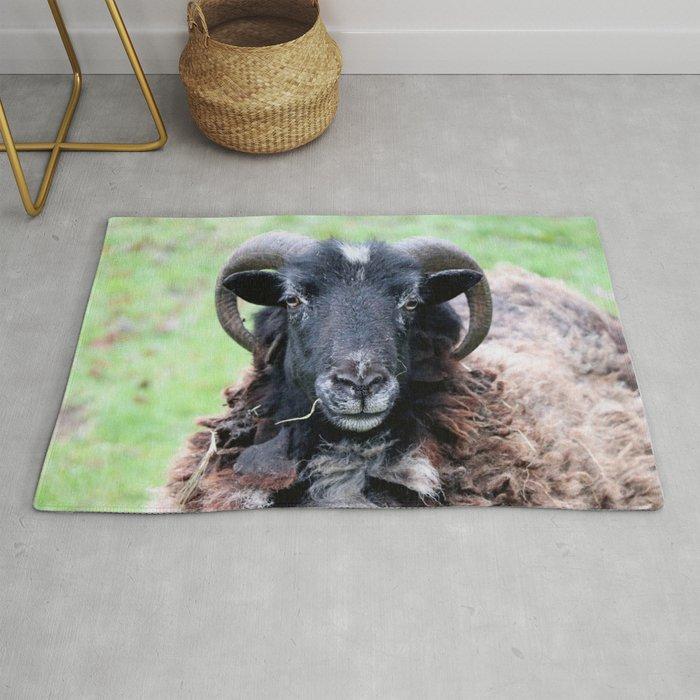 Sheep, a Horned Ram Rug