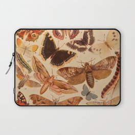 Vintage insects 1 Laptop Sleeve