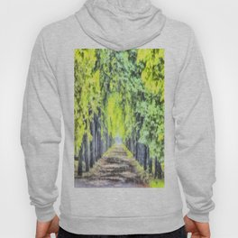 Forest Path Watercolour Hoody