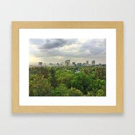 Viva Mexico City Framed Art Print