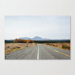 Kiwi Crossing Canvas Print