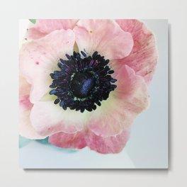 Anemone in Winter Metal Print