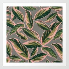 Calathea Leaves Pattern- Pink Green Gray Art Print