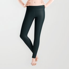 Solid Dark Slate Grey Color Code #25383C Leggings