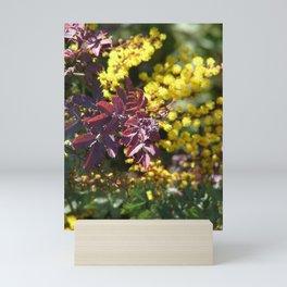 Acacia tree in spring Mini Art Print