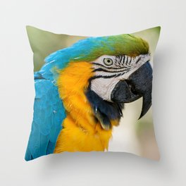 Blue Yellow Parrot (Bird Photography) Throw Pillow