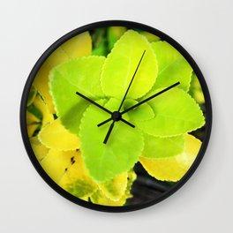 Macro Acid Lime Green Leaves Wall Clock