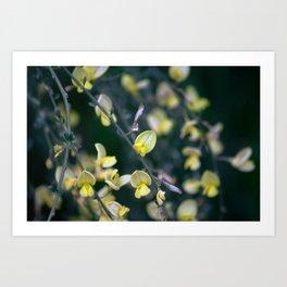 Yellow Blur Art Print