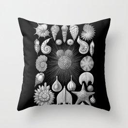 Sea Shells and Starfish (Thalamophora) by Ernst Haeckel Throw Pillow