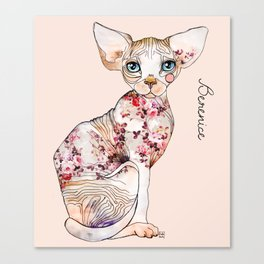Berenice the sphynx Canvas Print