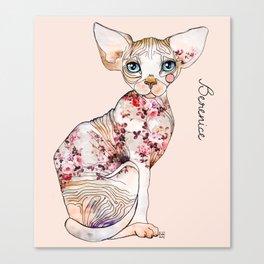 Berenice the sphynx Canvas Print