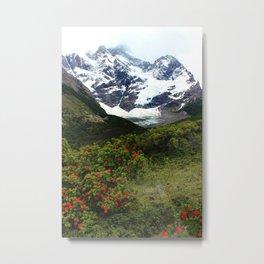 Torres Del Paine, Patagonia Metal Print