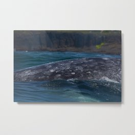Thar She Blows Metal Print