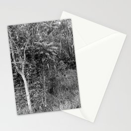 The Forest in Monochrome Stationery Cards