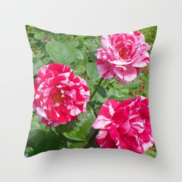 Pink and White Petals Throw Pillow