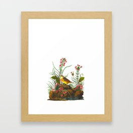 Yellow-winged Sparrow Framed Art Print