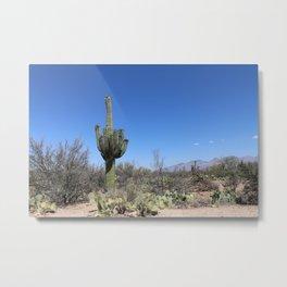 A Desert Landscape Metal Print