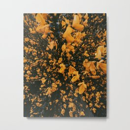 Yellow Flowers Bursting in the Forest Metal Print