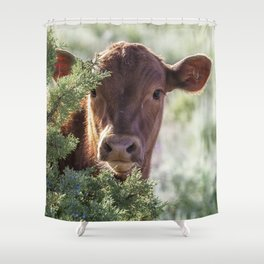 Shy Calf Shower Curtain