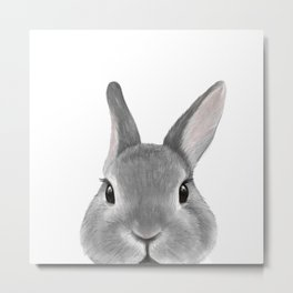 Netherland Dwarf rabbit Grey, illustration original painting print Metal Print