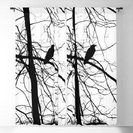 The Raven #2 Blackout Curtain