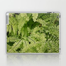ferns. Laptop & iPad Skin