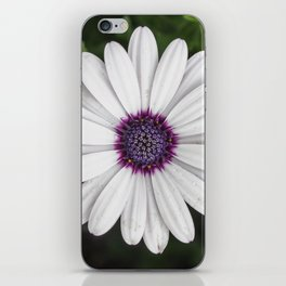 Flower Portriat - Purple Power iPhone Skin