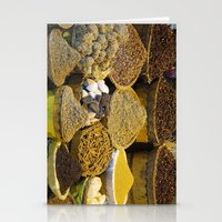 egyptian Stationery Cards featuring Egyptian Spices by Brian Raggatt