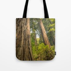 Giant Redwoods Tote Bag