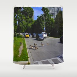 We Brake For Geese (Birds of Chicago Collection) Shower Curtain