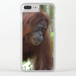 Bukit Lawang Orangutan Sumatra Clear iPhone Case