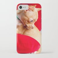 chihuahua iPhone & iPod Cases featuring Chihuahua by Luca Spanu