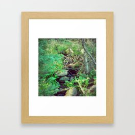Stream of Living Water Framed Art Print