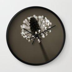 Ribwort Plantain Wall Clock