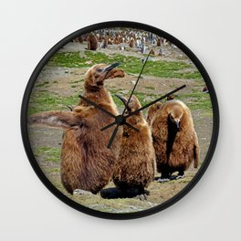 King Penguin Chicks Wall Clock