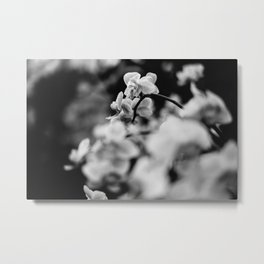 FujiPan Flowers  Metal Print