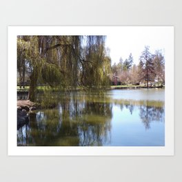 Old Weeping Willow Tree Standing Next To Pond Art Print