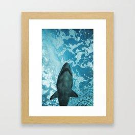 Shark Photography   Deep Sea   Ocean Art   Wildlife   Nature   Fish Framed Art Print