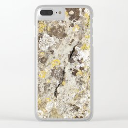 Lichen on The Rollright Stones Clear iPhone Case