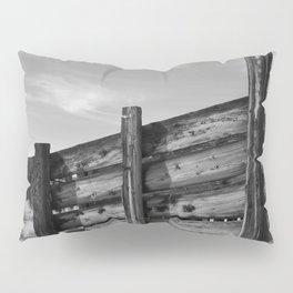 Sun Decayed Corral Pillow Sham