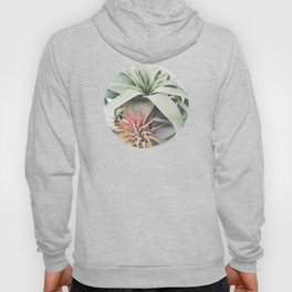 Air Plant Collection III Hoody