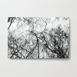 Tree Silhouette Series 4 Metal Print