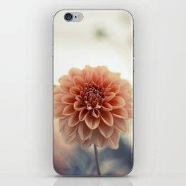 Dahlia Flower iPhone Skin