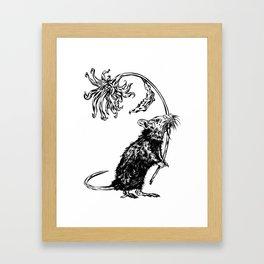 Rat with flower #2 Framed Art Print