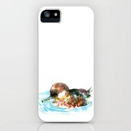 Duck, Bufflehead Duck baby Wild Duck iPhone Case