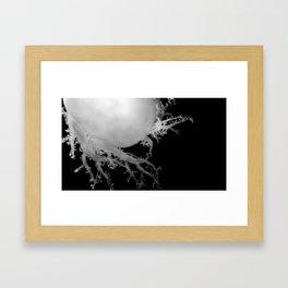 California Stars Framed Art Print