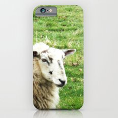 We Like Sheep iPhone 6s Slim Case